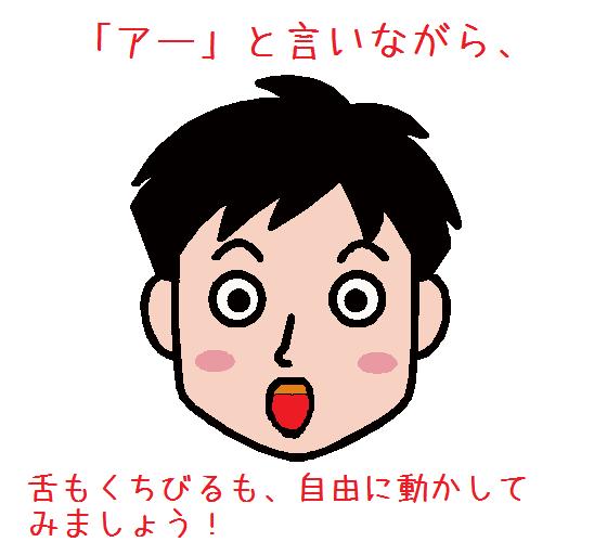 face_a13-both